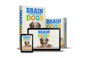 Best Online Course For Training Dogs in USA 2021